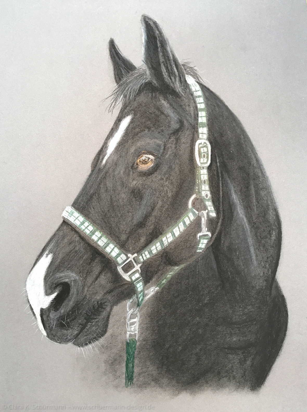 Pferd Herr Lönneberga